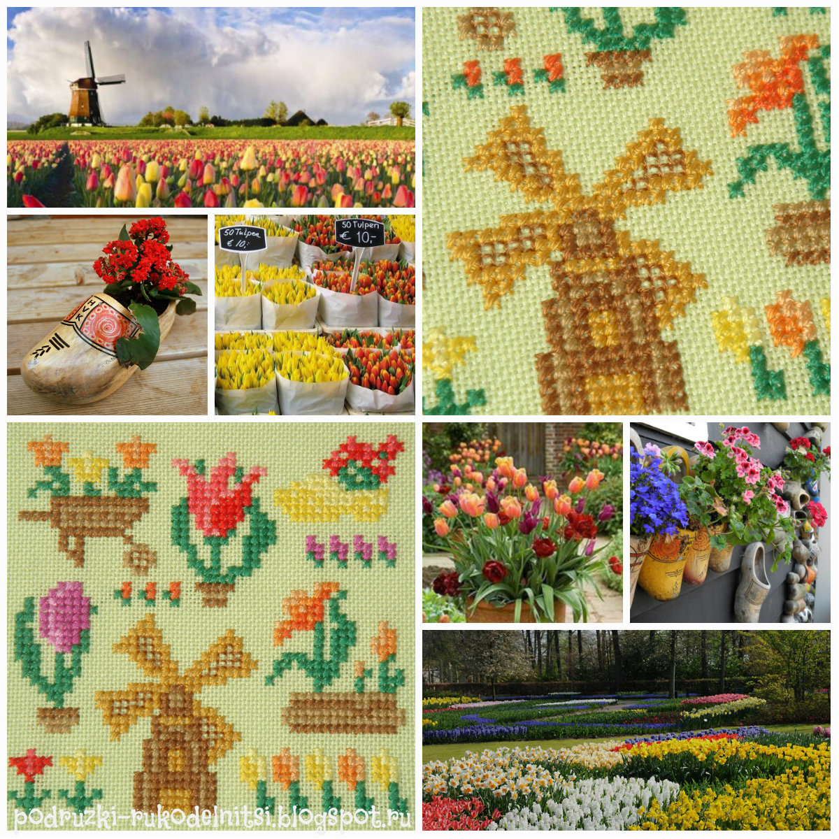 collage holland2.jpg